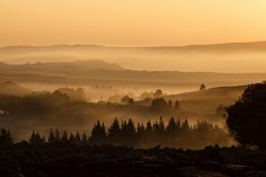 landscape-404072
